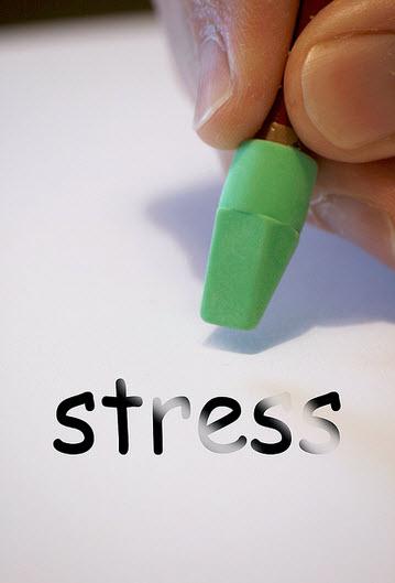 probiotic stress
