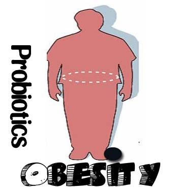 obesity-probiotics